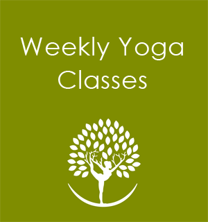Yoga Classes Seattle