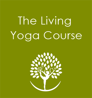Yoga Courses Seattle