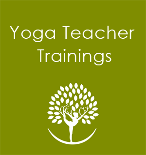Yoga Teacher Training Seattle